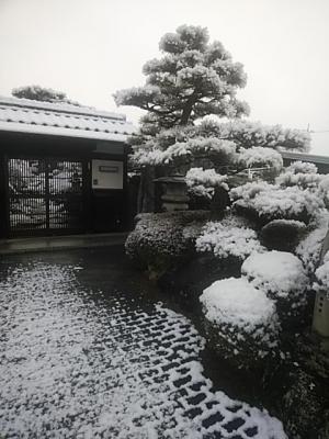 Photo_20201220085301
